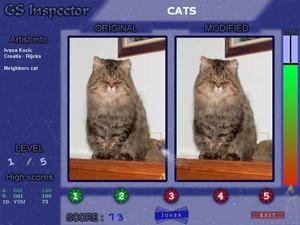 GS Inspector