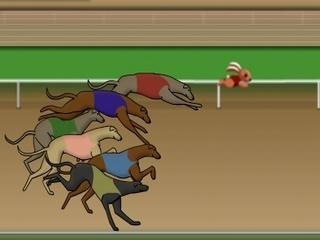dog racing games free online