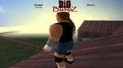 Big BumpZ