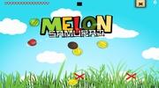 Melon Samurai