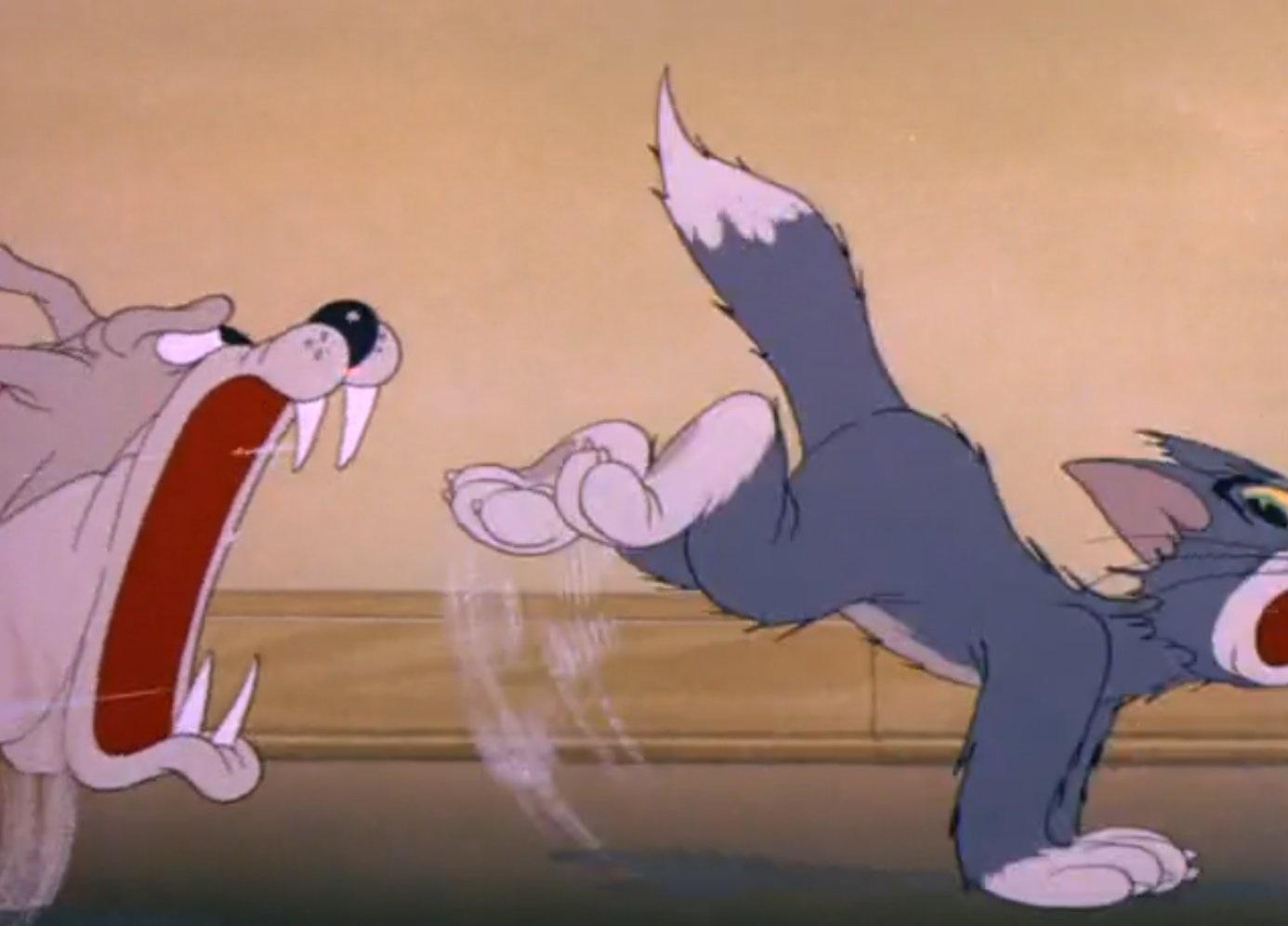 Tom a Jerry #5 - Problémy so psom