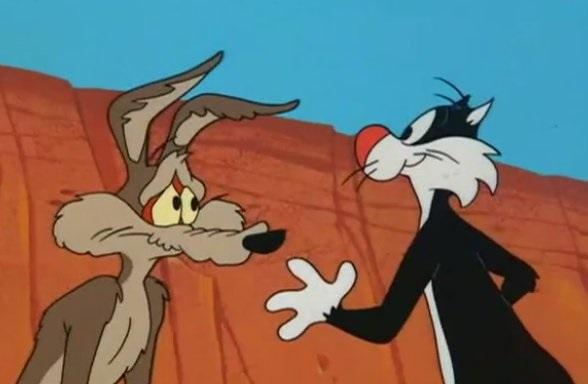 Kojot a Road Runner #28