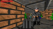 Wolfenstein 3D: The Final Solution