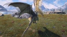 Dark and Light - Taming Dragon