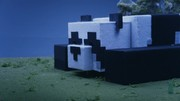 Minecraft - Cats and Pandas trailer