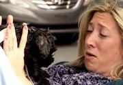 Žene sa narodí pes - skrytá kamera