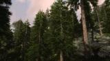Skyrim s novým modom ukazuje realistické 3D stromy a flóru