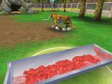 Zoo Tycoon 2 dokončený
