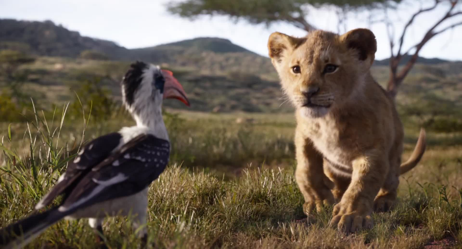 The Lion King - filmový trailer