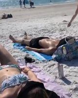 Keď na pláži kŕmite čajky
